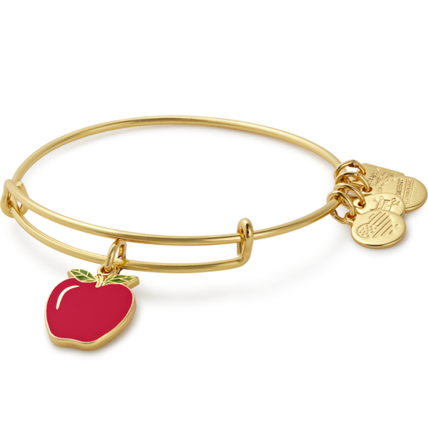 Alex and Ani Apple Bangle Bracelet